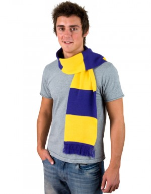 Result Winter Essentials Team Scarf