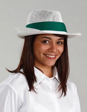 Serie Graffic Panama Equateur Hat